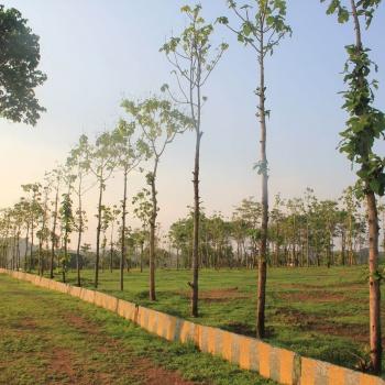 Walk-In-The-Park-3---Hosur-Farmland