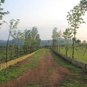 Walk-In-The-Park-4---Hosur-Farmland